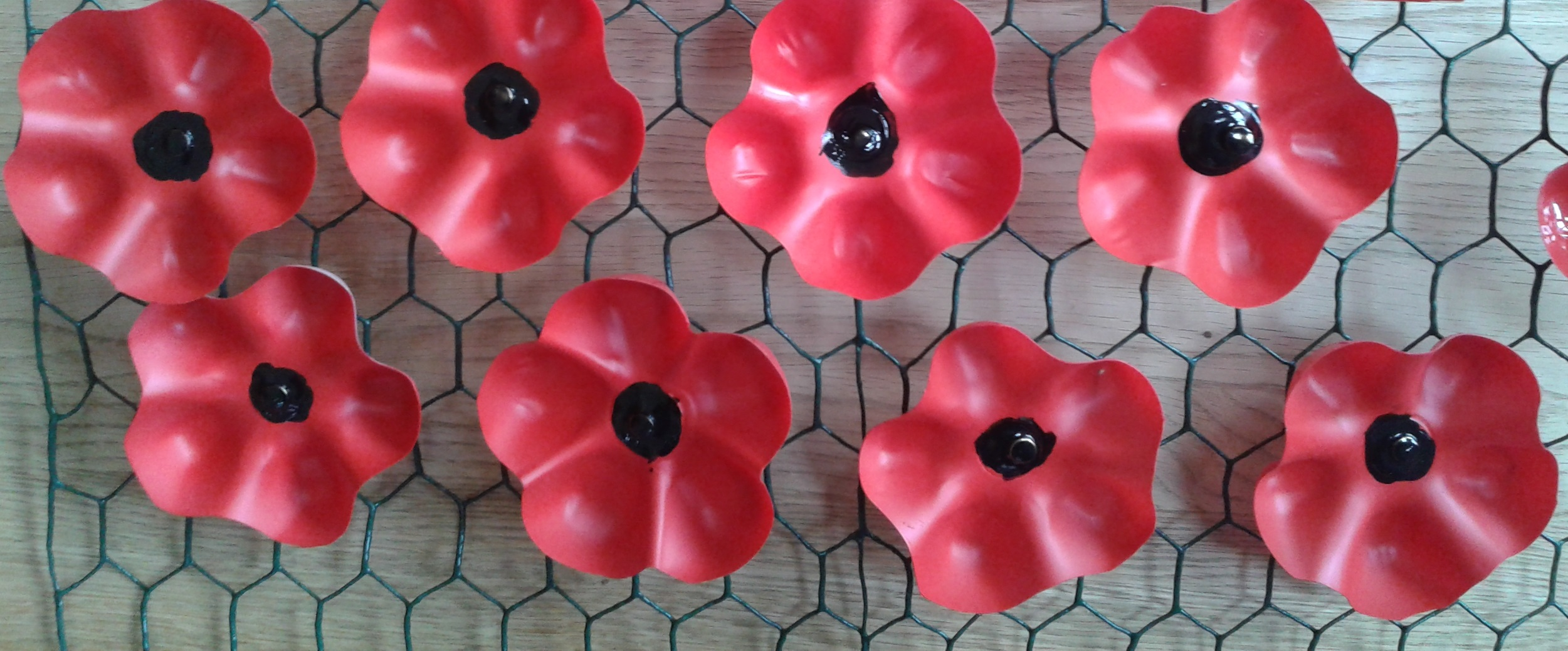 St laurence blackmore r 100 plastic bottle poppies back to remembrance 100 main page mightylinksfo